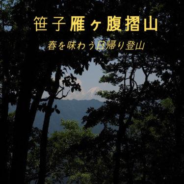【秀麗富嶽十二景】新緑とハルゼミが鳴く笹子雁ヶ腹摺山