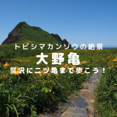 【佐渡】トビシマカンゾウ咲き乱れる大野亀 ~大野亀遊歩道と二ツ亀自然歩道を歩く~