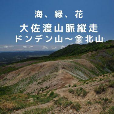 【佐渡】5月!ドンデン山~金北山の大佐渡山脈縦走。緑と花、そして海の絶景稜線歩き
