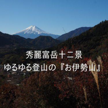【秀麗富嶽十二景】一番手軽な秀麗富岳。ゆるゆる登山・ファミリー登山にオススメな、お伊勢山