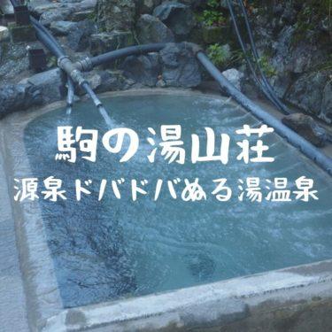 【越後 駒の湯山荘】越後駒ケ岳の登山後にオススメ。ぬる湯と圧倒的な湧出量の温泉!