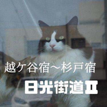 【日光街道Part2】越ケ谷宿~杉戸宿を歩く。宿泊でいく日光街道1日目