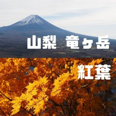 【山梨百名山】竜ヶ岳。本栖湖横にある紅葉と富士山が絶景の山
