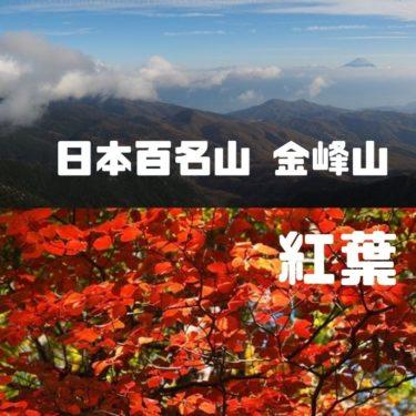 錦秋の瑞牆山・金峰山【前編】